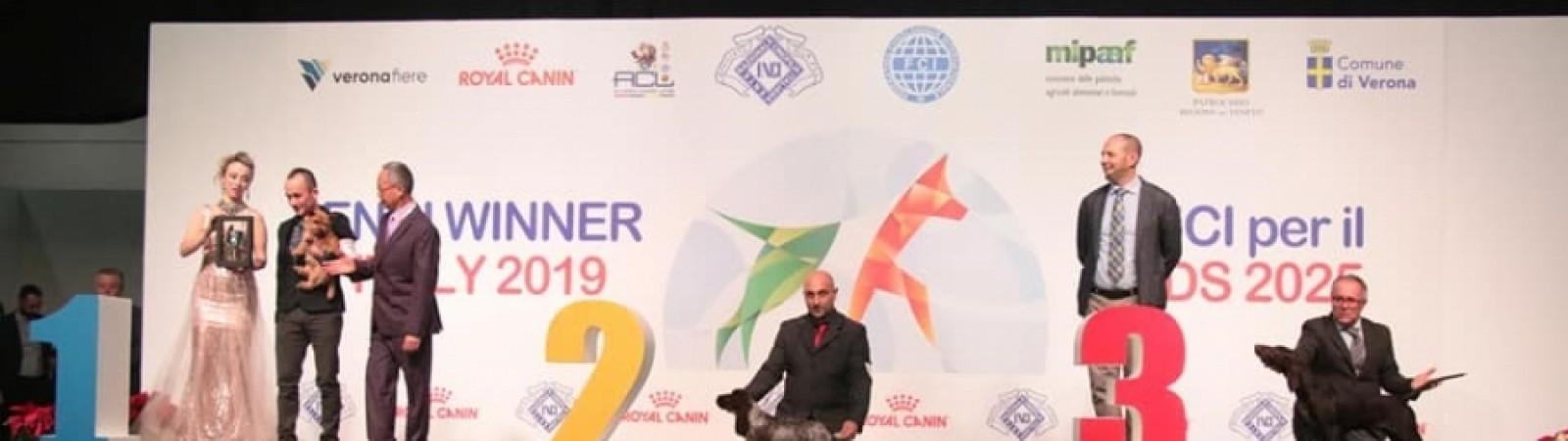 Soddisfazioni al ENCI winner 2019