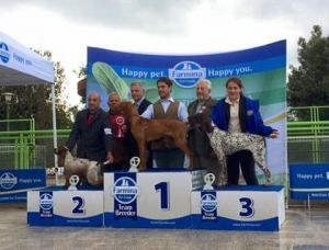 National Dog Show Rieti