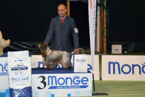 National Dog Show L'Aquila