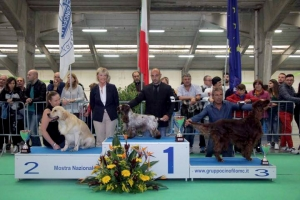National Dog Show Macerata